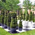 Пятый фестиваль «Императорские сады России» открылся в Санкт-Петербурге