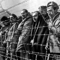 Фильм об Освенциме не показали на Берлинале